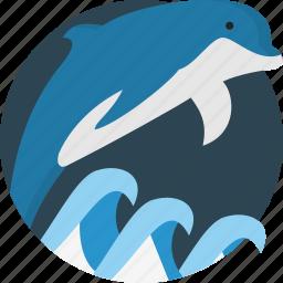 animal, dolphin, sea icon