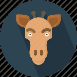 animal, giraffe, safari, zoo icon