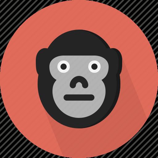 animal, gorilla, jungle, safari, zoo icon