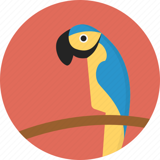 animal, jungle, parrot, safari, zoo icon