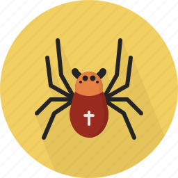 animal, danger, jungle, spider icon