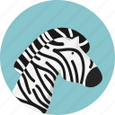 animal, jungle, safari, zebra icon