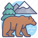animal, bear, wild, zoo icon