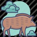 animal, boar, pig, wild icon