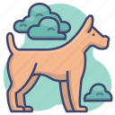 animal, dog, puppy, pet icon