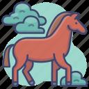 animal, animals, horse, mustang