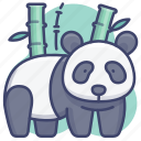 animal, animals, panda, zoo icon