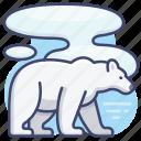 animal, arctic, bear, polar