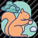 animal, forrest, squirrel, wild icon