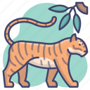 animal, tiger, wildlife, zoo icon