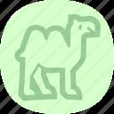 animal, camel, wasteland, zoo icon