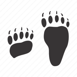bear, foots, paws, traces icon