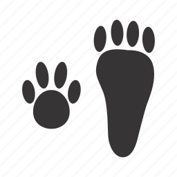 hare, paws, traces icon