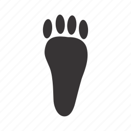 back_paw, hare, paw, trace icon
