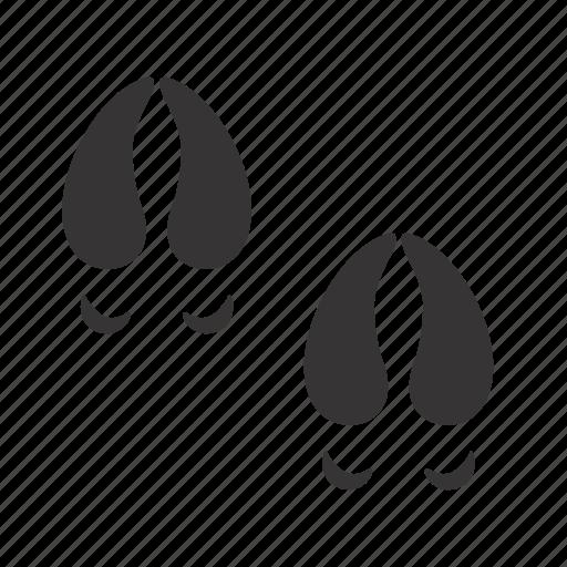 hoofs, moose, traces icon