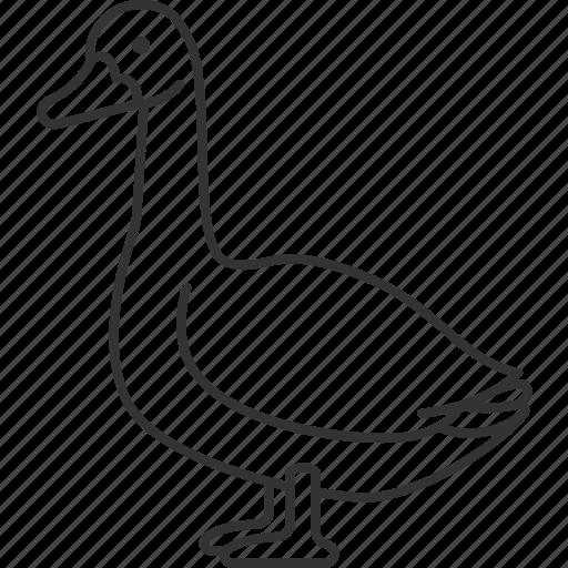 Goose, aquatic, barn, aggressive, bird icon - Download on Iconfinder