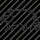 raccoon, tanuki, procyon, american, pest