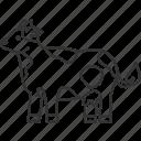 cow, cattle, milk, livestock, domestic