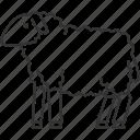 sheep, lamb, pasture, wool, mammal