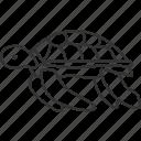 turtle, tortoise, aquatic, sea, animal