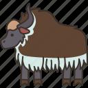 yak, cow, cattle, pasture, livestock icon