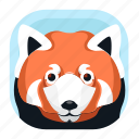 animal, mammals, panda, red panda, wildlife, zoo icon