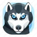 animal, dog, husky icon, pet, zoo icon