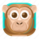 animal, chimp, mammals, monkey, wildlife, zoo icon