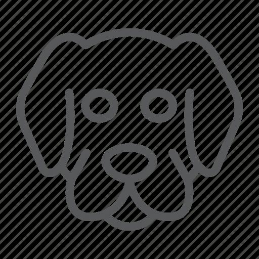 animal, dog, head, logo, pet, wild, zoo icon