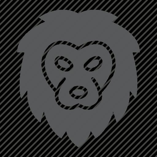 animal, head, king, lion, logo, wild, zoo icon
