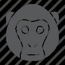 head, monkey, zoo, animal, logo, wild, simian