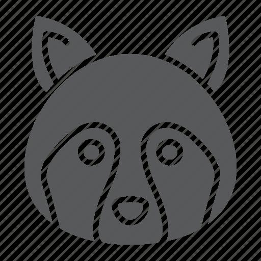 animal, coon, head, logo, raccoon, wild, zoo icon
