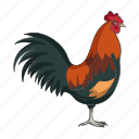 animal, bird, farm, garden, pet, rooster icon