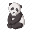 animal, bamboo, bear, fossil, herbivore, panda, zoo icon