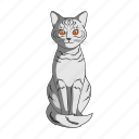 animal, cat, mammal, pet, zoo icon