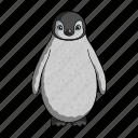 animal, bird, flightless, penguin, sea, waterfowl, wild icon