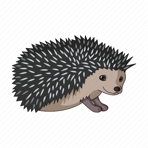 Animal, hedgehog, mammal, realistic, wild, zoo icon - Download on Iconfinder