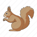 animal, mammal, rodent, squirrel, wild, zoo icon