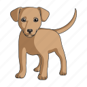 animal, dog, mammal, pet, puppy, zoo icon