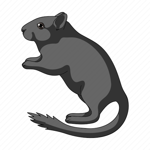 animal, gopher, mammal, rodent, wild, zoo icon
