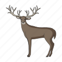 herbivore, deer, zoo, animal, wild, mammal, ungulate icon