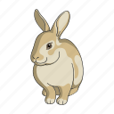 animal, forest, hare, herbivore, nature, pet, wild icon