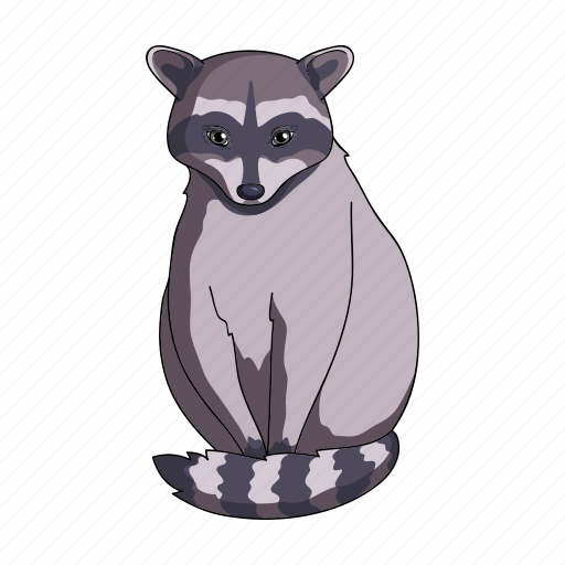 Animal, mammal, raccoon, wild, zoo icon - Download on Iconfinder