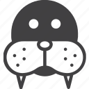face, head, morse, walrus icon