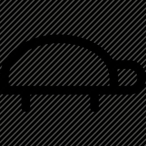 Reptile, shell, shield, slow, turtle icon