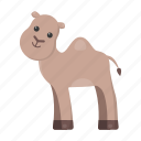 animal, camel, cute, toy icon