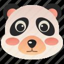 animal, bear, china, cute, panda