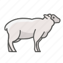 animal, farm, sheep icon