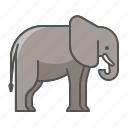 animal, elephant, wild icon