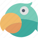bird, parrot, animal, beak, nature, pet icon